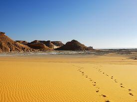 picture of sahara desert  - Footprints on sand dune against mountain background at sunrise Sahara Desert Egipt  - JPG