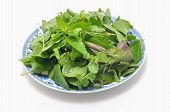 image of laxatives  - Dish of Vietnamese herbs on a white background - JPG