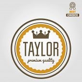 Vintage logo, badge, emblem or logotype elements for taylor poster