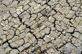 pic of arid  - Close up of arid lands - JPG
