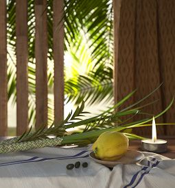 image of sukkot  - Symbols of the Jewish holiday Sukkot with palm leaves and candle - JPG