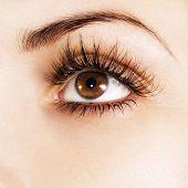 Olho de mulher com cílios extremamente longos