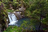 Постер, плакат: Waterfall In The Blue Lake At The Blue Mountains In New South Wales Australia