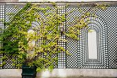 Wall with rack for plants in 9th arrondissement in Paris