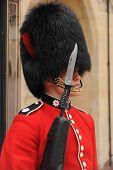 Guarding the Queen.