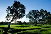 Hermoso paisaje Rural en las colinas de Adelaida