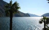 lake in lugano