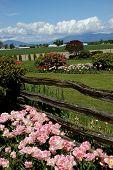 Skagit Valley Landscaping