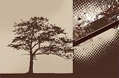 Grunge background with oak tree silhouette