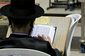 Hasidic jew reading the torah at the wailing western wall, jerusalem, israel