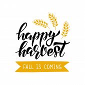 Happy Harvest - Hand Drawn Lettering Phrase With Harvest Symbols. Harvest Fest Poster Design. Autumn poster