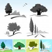 Símbolos e ícones de árvore realista