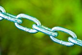 Chain Links On Green