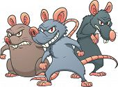 Three evil looking cartoon rats. Vector illustration with simple gradients. All in separate layers f
