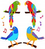 A colorful Theme of cute vector Icons : Parrots and Birds isolated on white