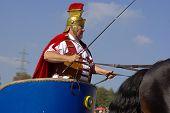 Chariot racing, Marbach Stallion Parade, Germany