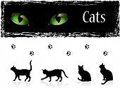 Black cats, eyes and footprints