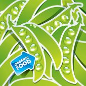 Background from peas with an arrow by organic food. Vector illustration.