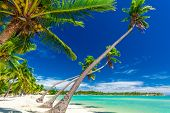 Tropical beach with coconut palm trees and clear lagoon on Fiji Islands poster