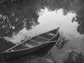 pic of bayou  - canoe and trees reflected in the florida bayou  - JPG