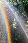 Beautiful, Bright Rainbow. Woman Gardener Watering Plants In Summer Garden. Close Up Of Beautiful Re poster