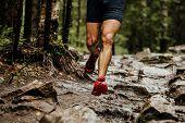 Wet Feet Runner Athlete Running On Trail Stones In Forest poster