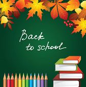 back to school background with autumn leaves