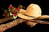 Um Natal de Cowboy