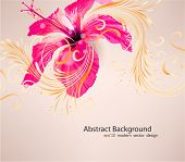 Hibiscus flower background
