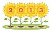 New Year 2013 yellow sunflowers.