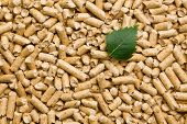 the wooden pellets .ecological heating