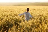 stock photo of paysage  - Woman in a wheat field on a summer evening - JPG