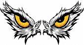 Eagle Eyes-Vektor-illustration