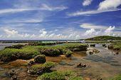 Inarajan Reef Guam