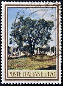 A stamp printed in Italy dedicated to forest biodiversity shows an olive tree