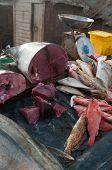 Fish Market - Asia