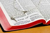 Rosary Bible Page - Esther