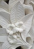 Frangipani flower motifs on the wall