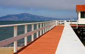 Marina Boardwalk