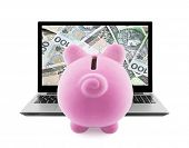 Piggy bank and laptop full of polish money isolated on white