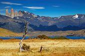 Torres del Paine National Park, Laguna Azul, Patagonia, Chile