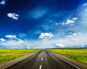Travel concept background - road in blooming spring meadow
