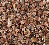 sementes de trigo cru close-up macro tiro superfície fundo
