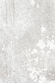 highly Detailed grunge background with space for your design