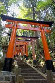 Close-up of Torii gates at Fushimi Inari Shrine in Kyoto, Japan.Fushimi Inari Shrine