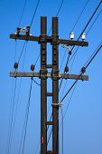 High voltage poles,Mono pole transmission line tower,The power energy in the city