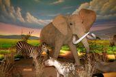 Постер, плакат: Сборник рассказов слон