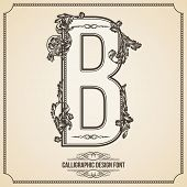 Calligraphic Design Font with Typographic Floral Elements for your Artworks. Nice for Page Decoration. Letter B