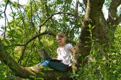 Young Girl With Laptop, In A Tree