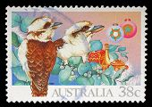 AUSTRALIA - CIRCA 1990: A Stamp printed in Australia shows bird, circa 1990.